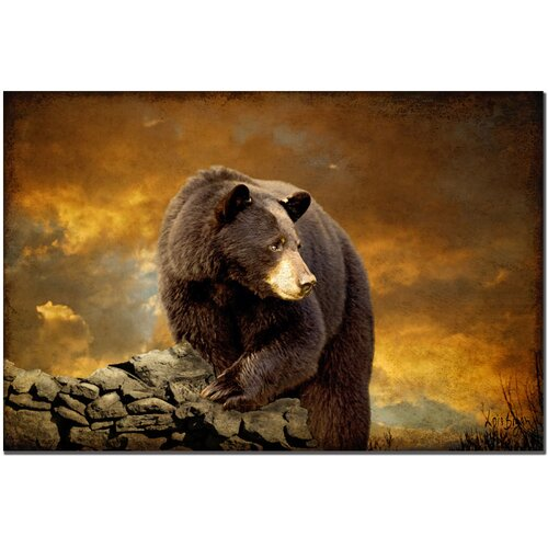 'The Bear Went Over the Mountain' by Lois Bryan Photographic Print on Canvas