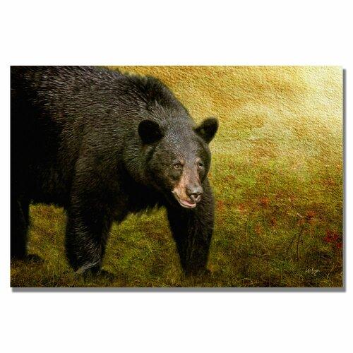 'Big Black Bear' by Lois Bryan Photographic Print on Canvas
