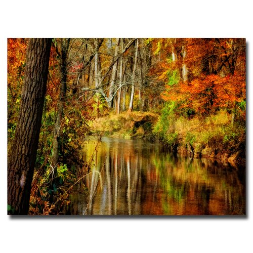 'Bob's Creek' by Lois Bryan Photographic Print on Canvas