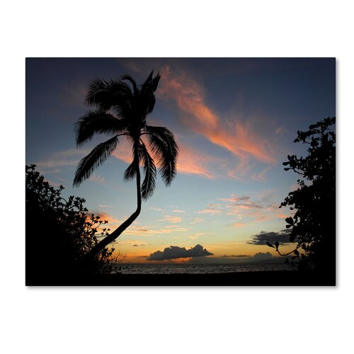 'Tropical Sunset' by Pierre Leclerc Photographic Print on Canvas