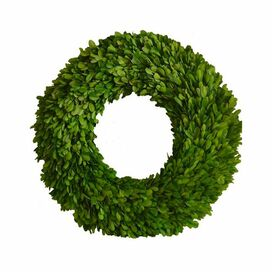 "Preserved Boxwood 24"" Round Wreath"