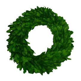 "Preserved Boxwood 16"" Round Wreath"