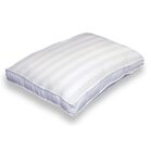Dual Position Pillow Joss Amp Main