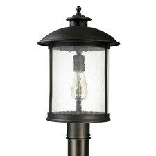 Dylan 1 Light Outdoor Hanging Lantern