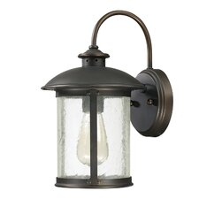 Dylan 1 Light Outdoor Wall Lantern