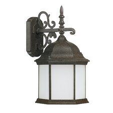 Main Street 1 Light Outdoor Wall Lantern