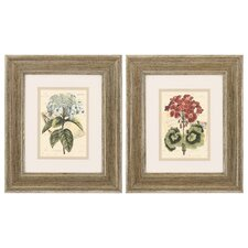 Bouquet III and IV 2 Piece Framed Painting Print Set