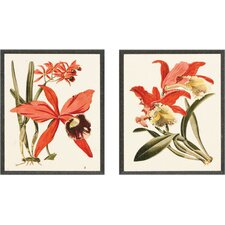 "Orchid III and IV Graphic Art Set - 10"" x 12"""
