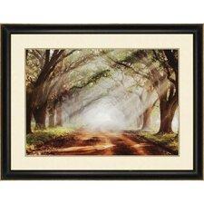 Evergreen Plantation by Jones Framed Photographic Print