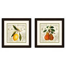 Natural History Fruits 2 Piece Framed Graphic Art