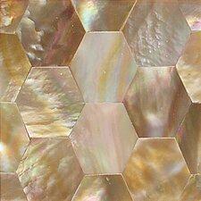 """Ocean Jewels 2"""" x 2"""" Hexagon Accent Tile in Brown Lip"""