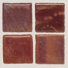 "Sonterra 1"" x 1"" Glass Mosaic Tile in Terracotta"