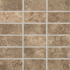 "San Michele 2"" x 4"" Ceramic Mosaic Tile in Moka"