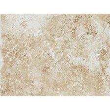 """Fidenza 9"""" x 12"""" Porcelain Field Tile in Bianco"""