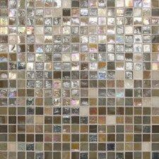 "City Lights 0.5"" x 0.5"" Glass Mosaic Tile in Barcelona"