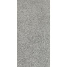 Magma 12'' x 24'' Porcelain Field Tile in Hammered Ash