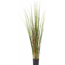 Grass and Bamboo Floor Plant in Pot