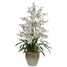 Triple Dancing Lady Silk Orchid Flower in White