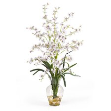 Dancing Lady Liquid Illusion Silk Orchid Arrangement in White