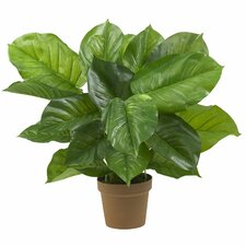 Philodendron Silk Plant (Real Touch)