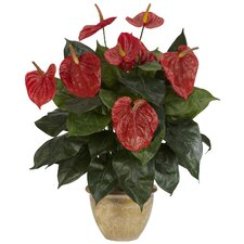Anthurium Desk Top Plant in Decorative Vase