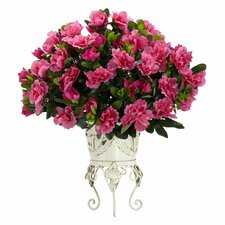 Azalea Desk Top Plant in Decorative Vase