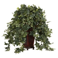 Vining Puff Ivy Floor Plant in Decorative Vase