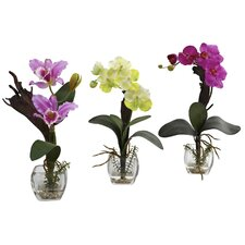 Mixed Orchid with Cube Flowers (Set of 3)
