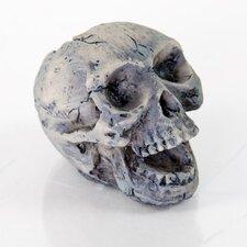 Decorative Human Skull Aquarium Sculpture