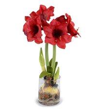 Faux Amaryllis Plant