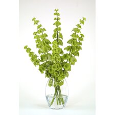 Waterlook® Silk Bells of Ireland Desk Top Plant in Vase