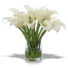 Waterlook Silk Calla Lilies in Clear Glass Cylinder