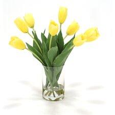 Waterlook Dutch Tulips in Glass Cylinder Vase