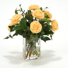 Waterlook Apricot Ranunculus with Ivy and Basil in Square Glass