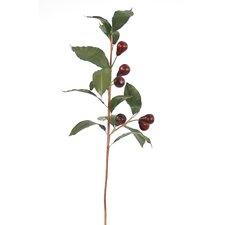 DIY Foliage Olive Branch Tree (Set of 6)