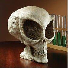 Extra-Terrestrial Alien Skull Statue
