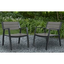 Anson Dining Arm Chair (Set of 2)