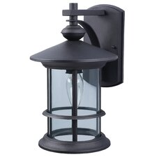 Treehouse 1 Light Outdoor Sconce