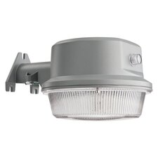 60 Light Wall Lantern