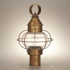 Onion Medium Base Socket Caged Round Post Light