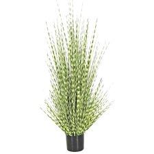 Faux Zebra Grass Tree in Pot