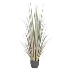 Faux Gladiolus Grass Tree in Pot