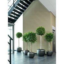 Loft Round Pot Planter