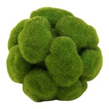 Moss Sphere Topiary