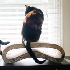 Leeloo Recycled Paper Cat Scratcher Board