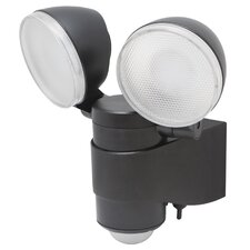 Battery Powered Security LED Spot Light