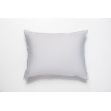 Single Shell Standard Cotton Euro Pillow