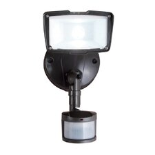 All-Pro Flood Light