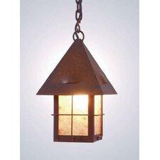 Lapaz 1 Light Outdoor Hanging Lantern