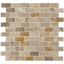 "Jade 1"" x 2"" Porcelain Mosaic Tile in Taupe"